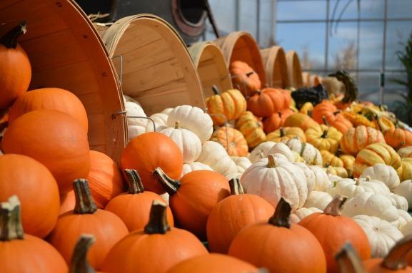 gourds-949112_1280